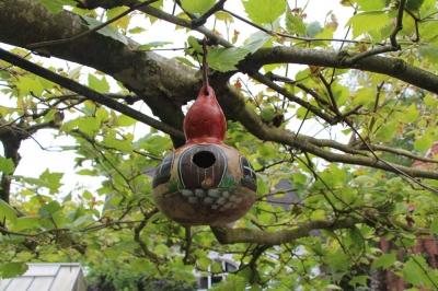 Kalebassen-Vogelhäuser